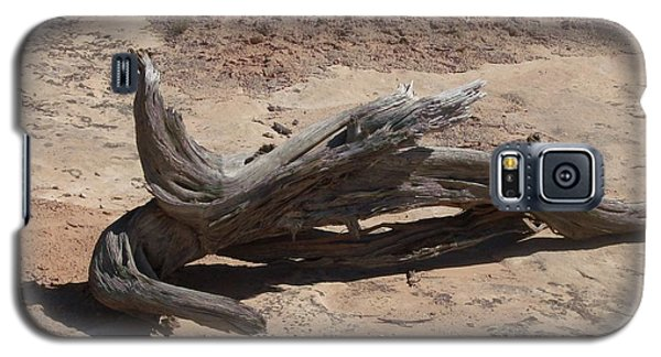 Galaxy S5 Case featuring the photograph Desert Wildwood by Fortunate Findings Shirley Dickerson