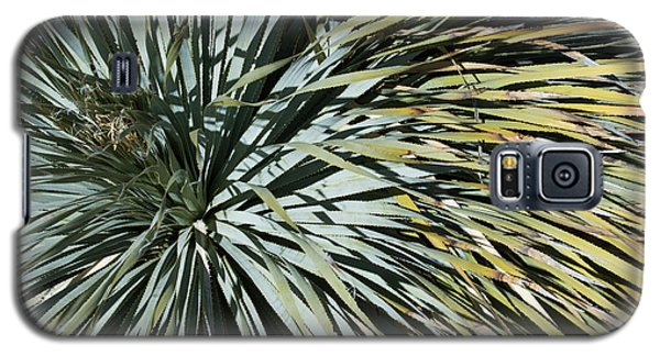 Galaxy S5 Case featuring the photograph Desert Yucca by Avian Resources