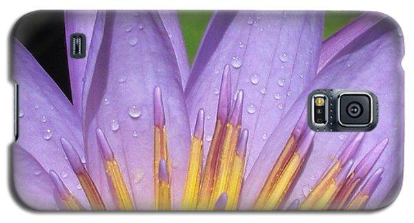 Desire Galaxy S5 Case