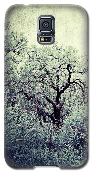 Destiny Galaxy S5 Case