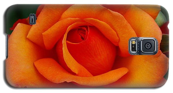 Galaxy S5 Case featuring the photograph Detail In Orange by John S