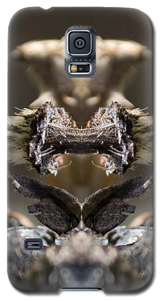 Galaxy S5 Case featuring the photograph Devil's Squeezebox by WB Johnston