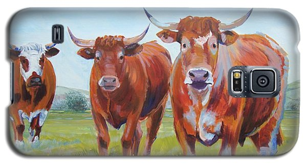 Devon Cattle Galaxy S5 Case