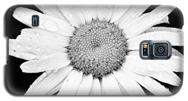 Dew Drop Daisy Galaxy S5 Case