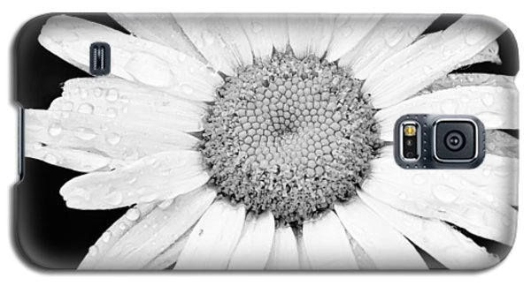 Dew Drop Daisy Galaxy S5 Case