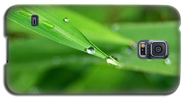 Galaxy S5 Case featuring the photograph Dew Drop by Jean Haynes
