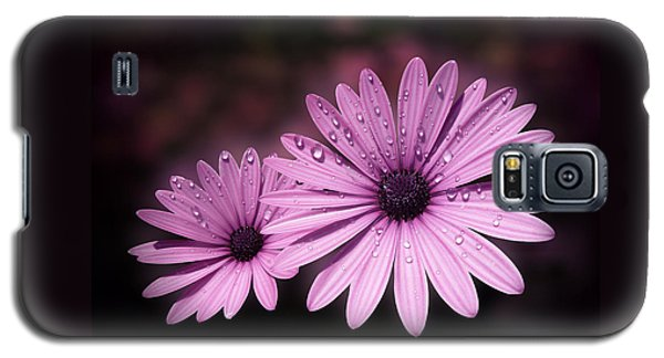 Dew Drops On Daisies Galaxy S5 Case