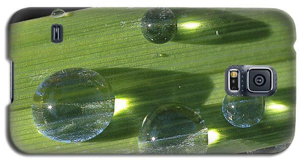 Galaxy S5 Case featuring the photograph Dew Drops On Leaf by Gary Slawsky