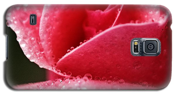Galaxy S5 Case featuring the photograph Dew Drops On Pink by Rebecca Davis