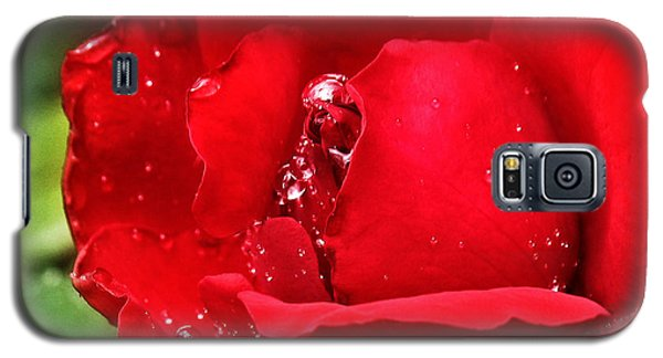 Galaxy S5 Case featuring the pyrography Dew Drops On Red by Rebecca Davis