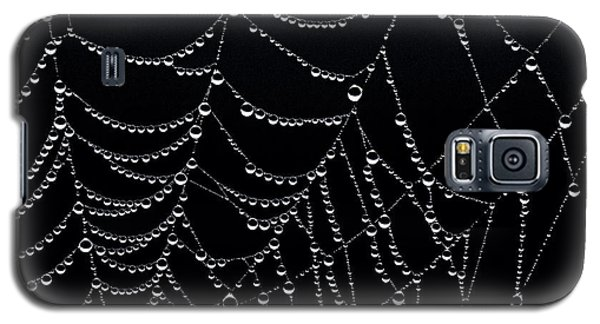 Galaxy S5 Case featuring the photograph Dew Drops On Web 2 by Marty Saccone