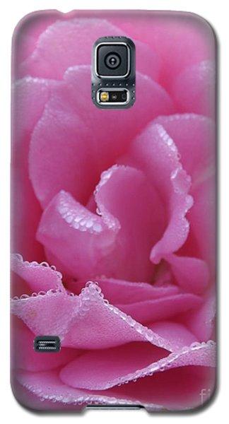 Dew Kissed Rose Galaxy S5 Case by Sara  Raber