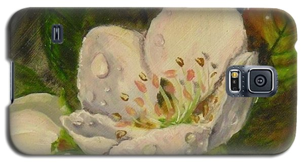 Dew Of Pear's Blooms Galaxy S5 Case
