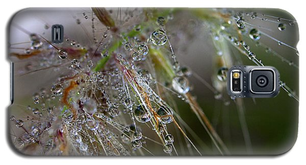 Galaxy S5 Case featuring the photograph Dew On Fountain Grass by Joe Schofield