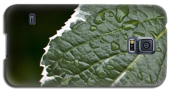 Dew On Leaf Galaxy S5 Case