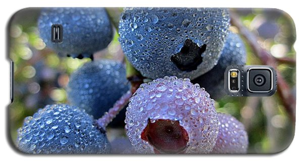 Dewy Blueberries Galaxy S5 Case