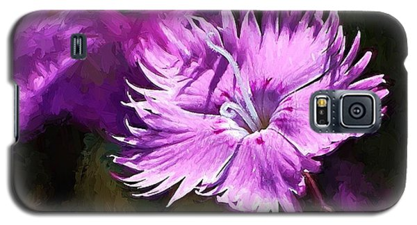 Galaxy S5 Case featuring the photograph Dianthus by Ludwig Keck