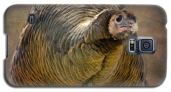 Did I Miss Thanksgiving?  Galaxy S5 Case