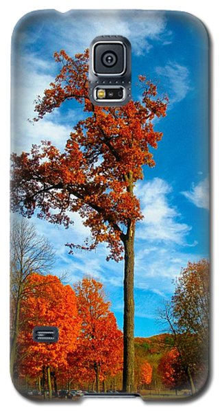 Galaxy S5 Case featuring the photograph Loneliness by Zafer Gurel