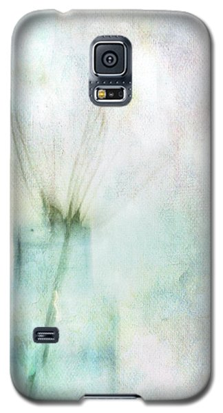 Different Galaxy S5 Case
