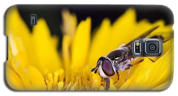 Digging In Galaxy S5 Case