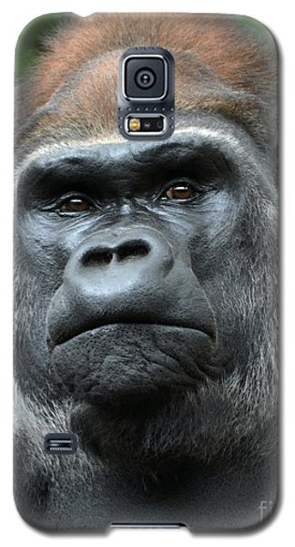 Dignity Galaxy S5 Case