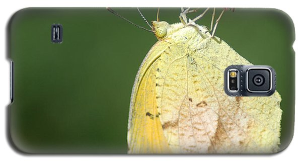 Dina Yellow Galaxy S5 Case