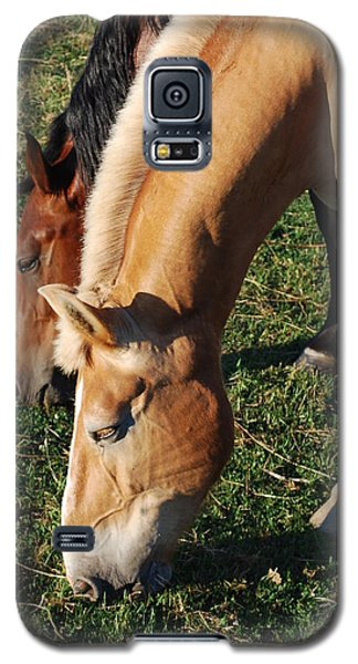 Galaxy S5 Case featuring the photograph Dinner Date by Mary Beth Landis