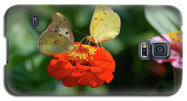 Galaxy S5 Case featuring the photograph Dinner Table For Two Butterflies by Thomas Woolworth