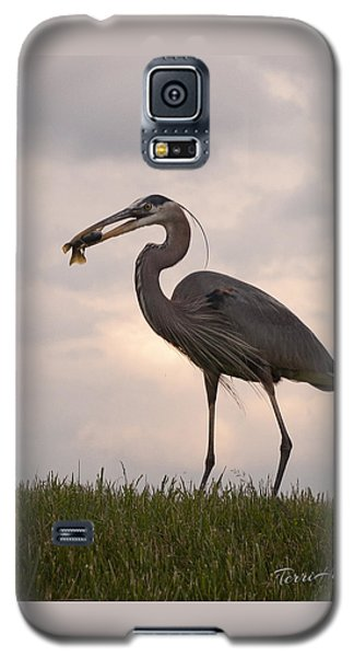 Galaxy S5 Case featuring the photograph Dinner Time by Terri Harper
