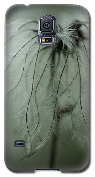 Discarded Dreams Galaxy S5 Case by Shane Holsclaw