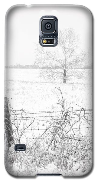 Distant Tree Galaxy S5 Case