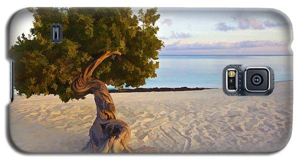 Divi Divi Tree Of Aruba Galaxy S5 Case