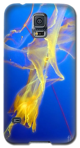 Divine Dancer II Galaxy S5 Case