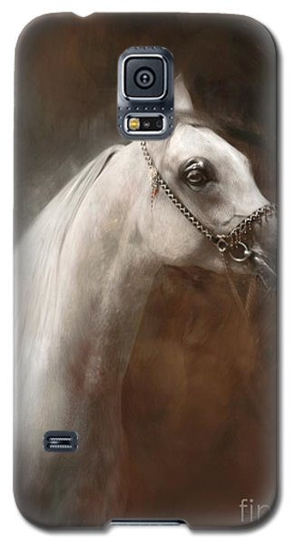 Galaxy S5 Case featuring the painting Divine Soul by Dorota Kudyba
