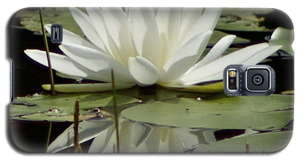 Galaxy S5 Case featuring the photograph Dockside Lily by Alice Mainville