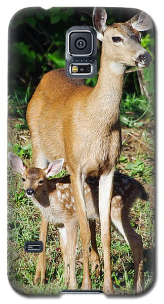 Galaxy S5 Case featuring the photograph Doe And Fawn by Adria Trail