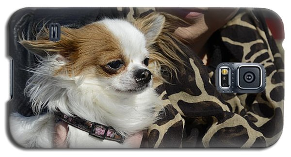 Dog And True Friendship 2 Galaxy S5 Case by Teo SITCHET-KANDA