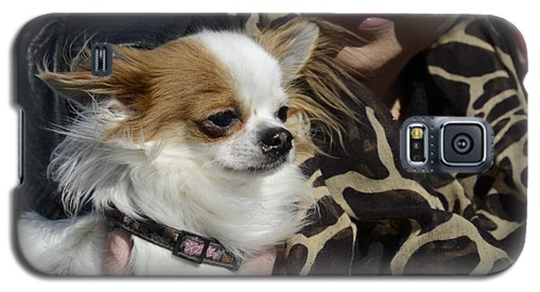 Dog And True Friendship 2 Galaxy S5 Case