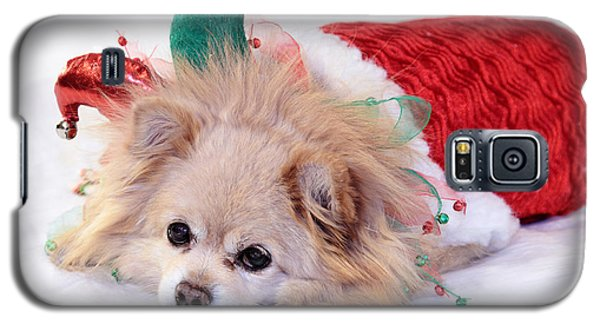 Dog In Christmas Costume Galaxy S5 Case by Charline Xia