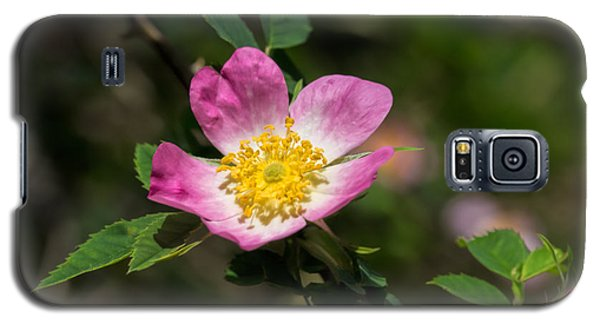 Galaxy S5 Case featuring the photograph Dog-rose by Leif Sohlman