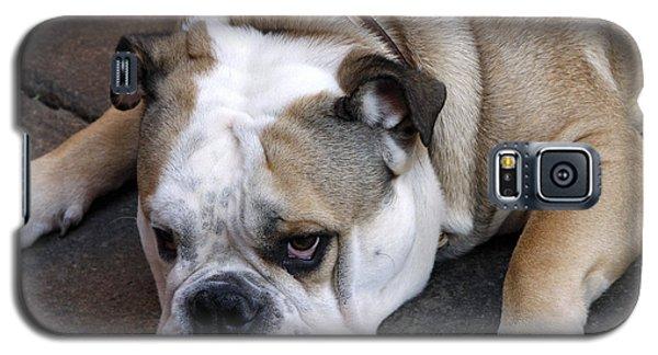 Dog. Tired. Galaxy S5 Case