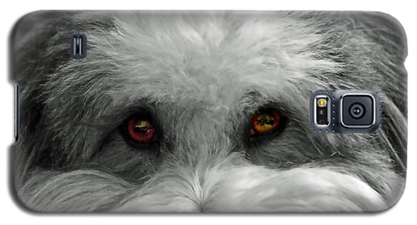 Galaxy S5 Case featuring the photograph Coton Eyes by Keith Armstrong
