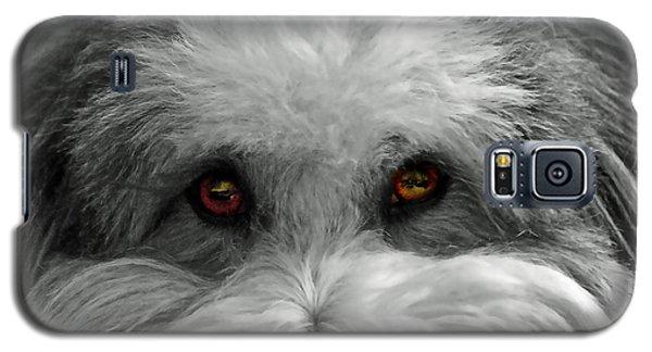 Coton Eyes Galaxy S5 Case