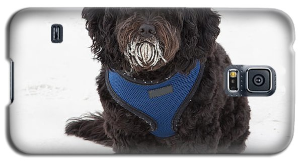 Doggone Good Beach Fun Galaxy S5 Case