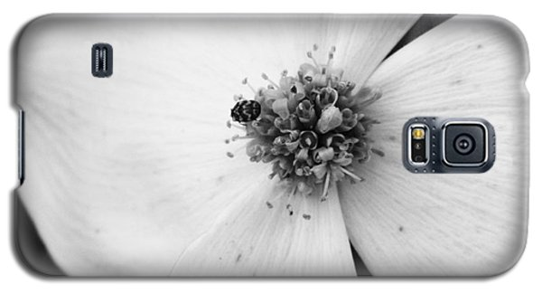 Dogwood Black And White 2 Galaxy S5 Case