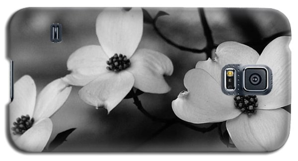 Dogwood Black And White Galaxy S5 Case