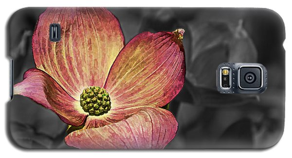 Dogwood Bloom Galaxy S5 Case