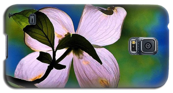 Galaxy S5 Case featuring the photograph Dogwood Blossom by Ludwig Keck