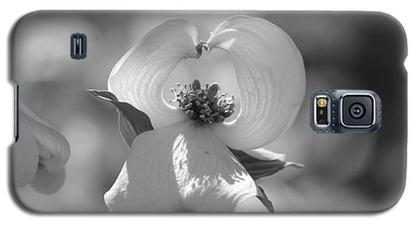 Galaxy S5 Case featuring the photograph Dogwood Blossom by Tannis  Baldwin